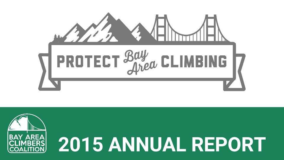 2015 Annual Report (11)