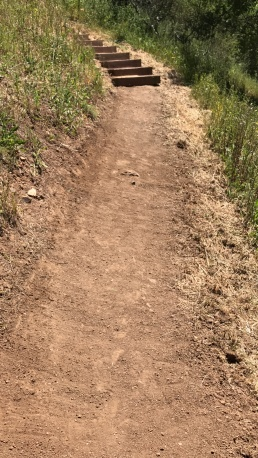 Re-cambered trail, after our work