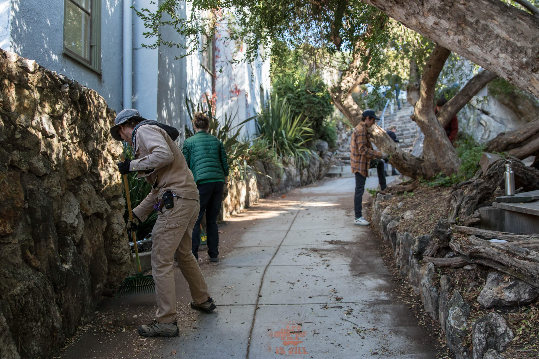 a crew of volunteers rake a path