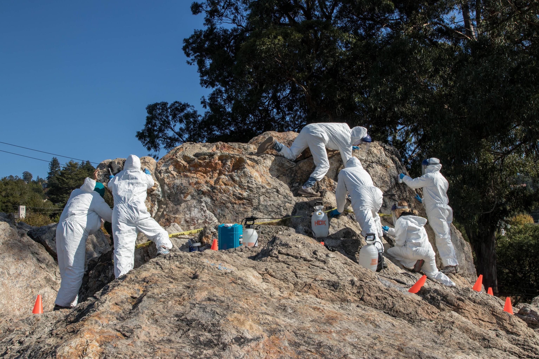 a graffiti removal crew removing graffiti from Indian Rock