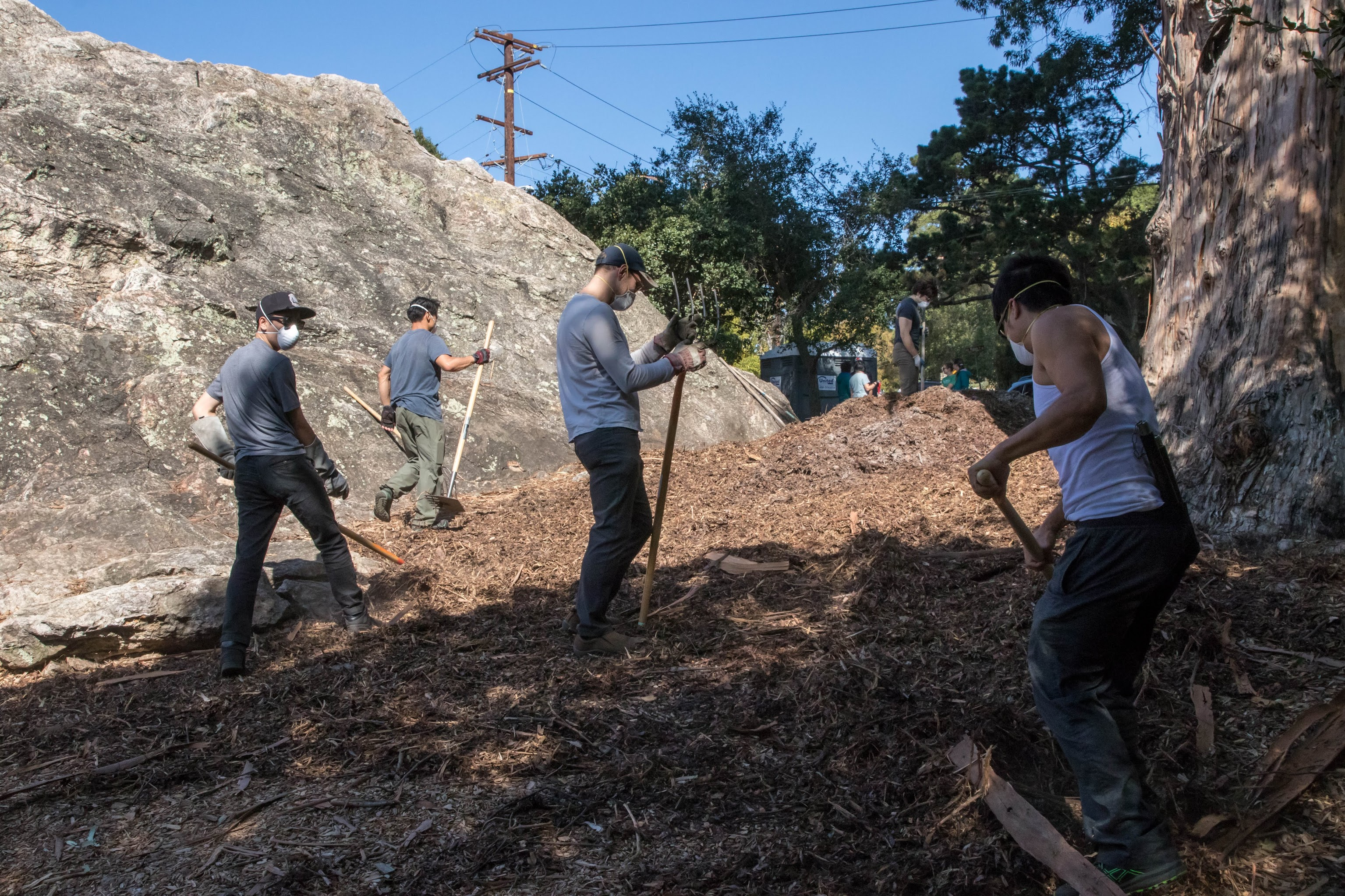 volunteers wearing face masks spreading mulch in a clearing next to Indian Rock