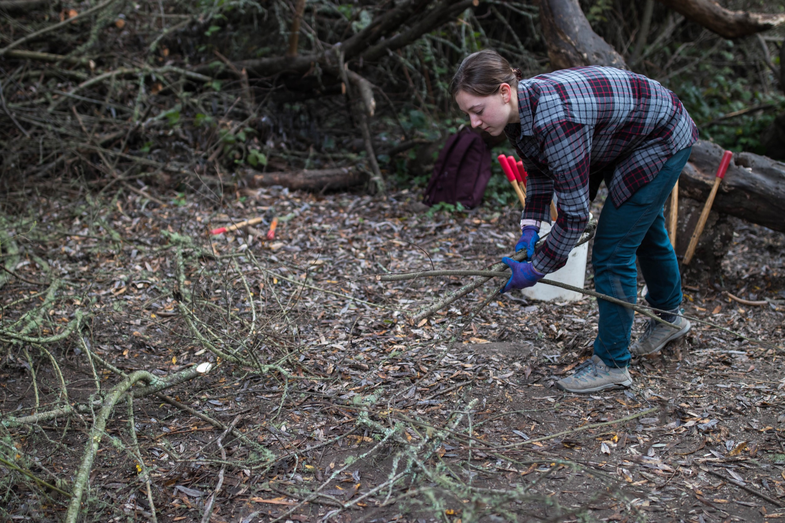 A volunteer picks up brush from the trail