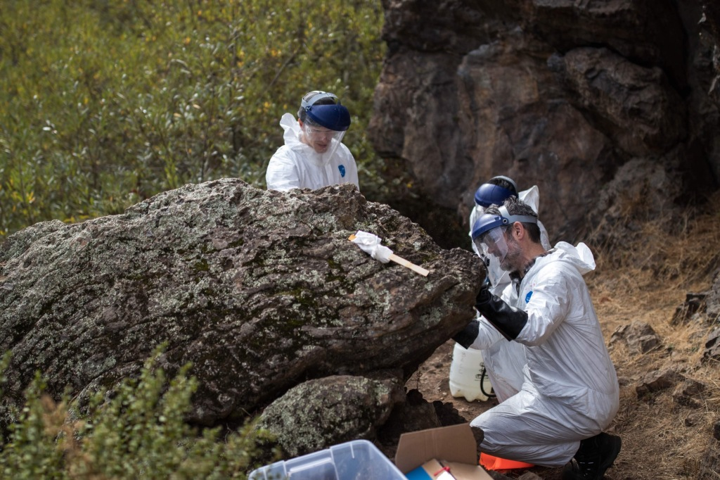 volunteers wearing face shields removing graffiti from a small boulder