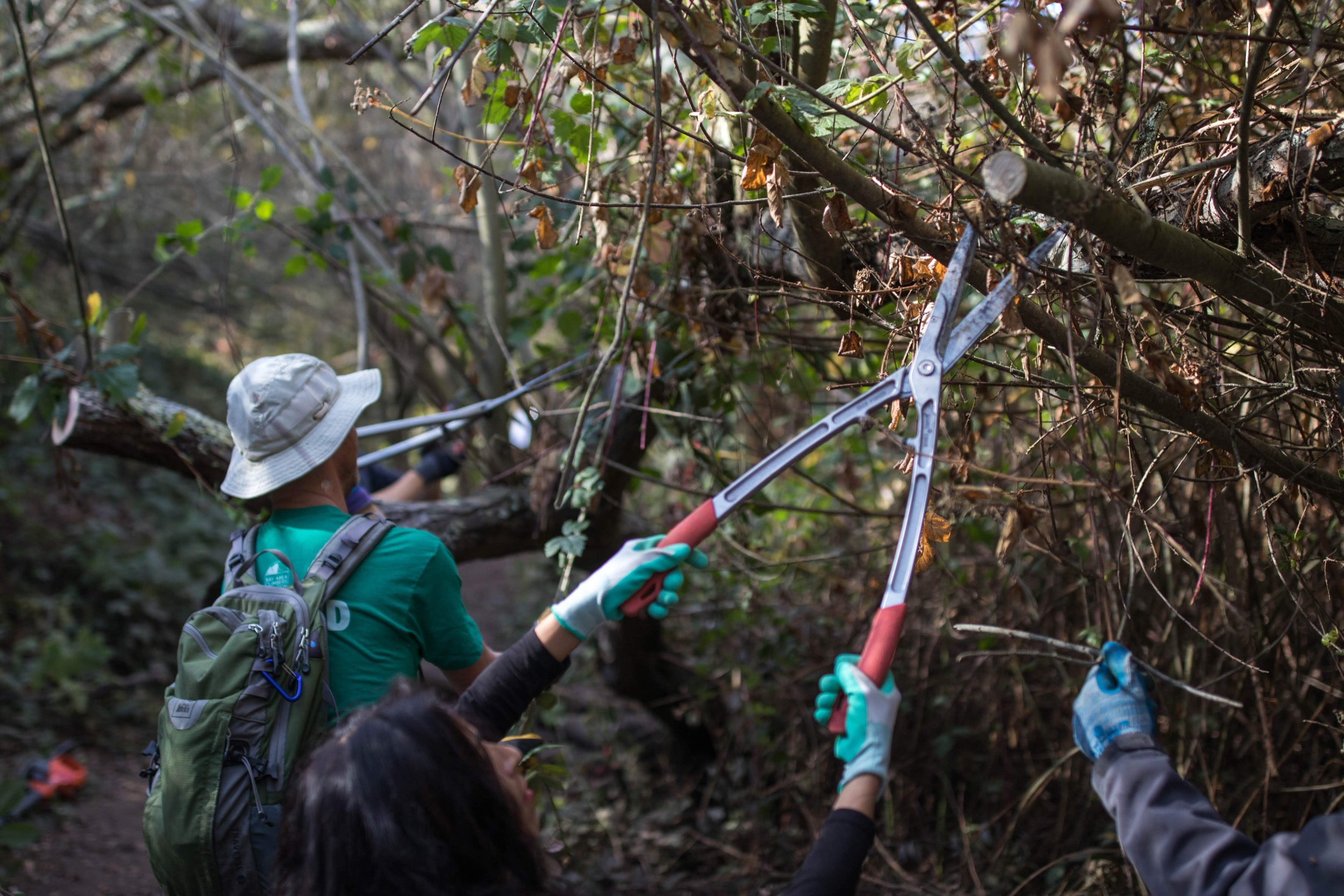 Volunteers trim back brush that had been encroaching upon the trail